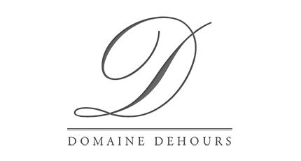 DomaineDehoursLogo